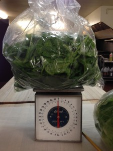 Nope, that scale isn't broken, and no, that spinach doesn't weigh less than air! That's 2 pounds of spinach from one harvest!