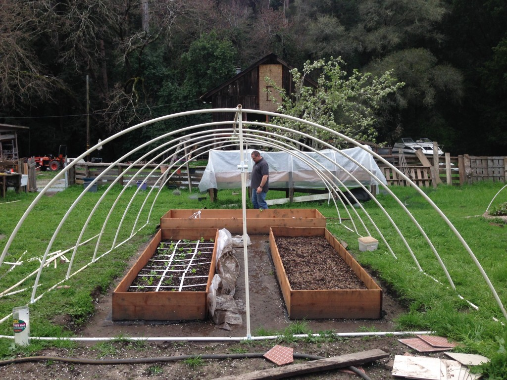 Yes! A home-made Hoop House!