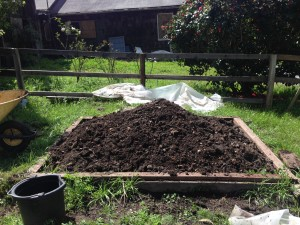 An abundance of compost!